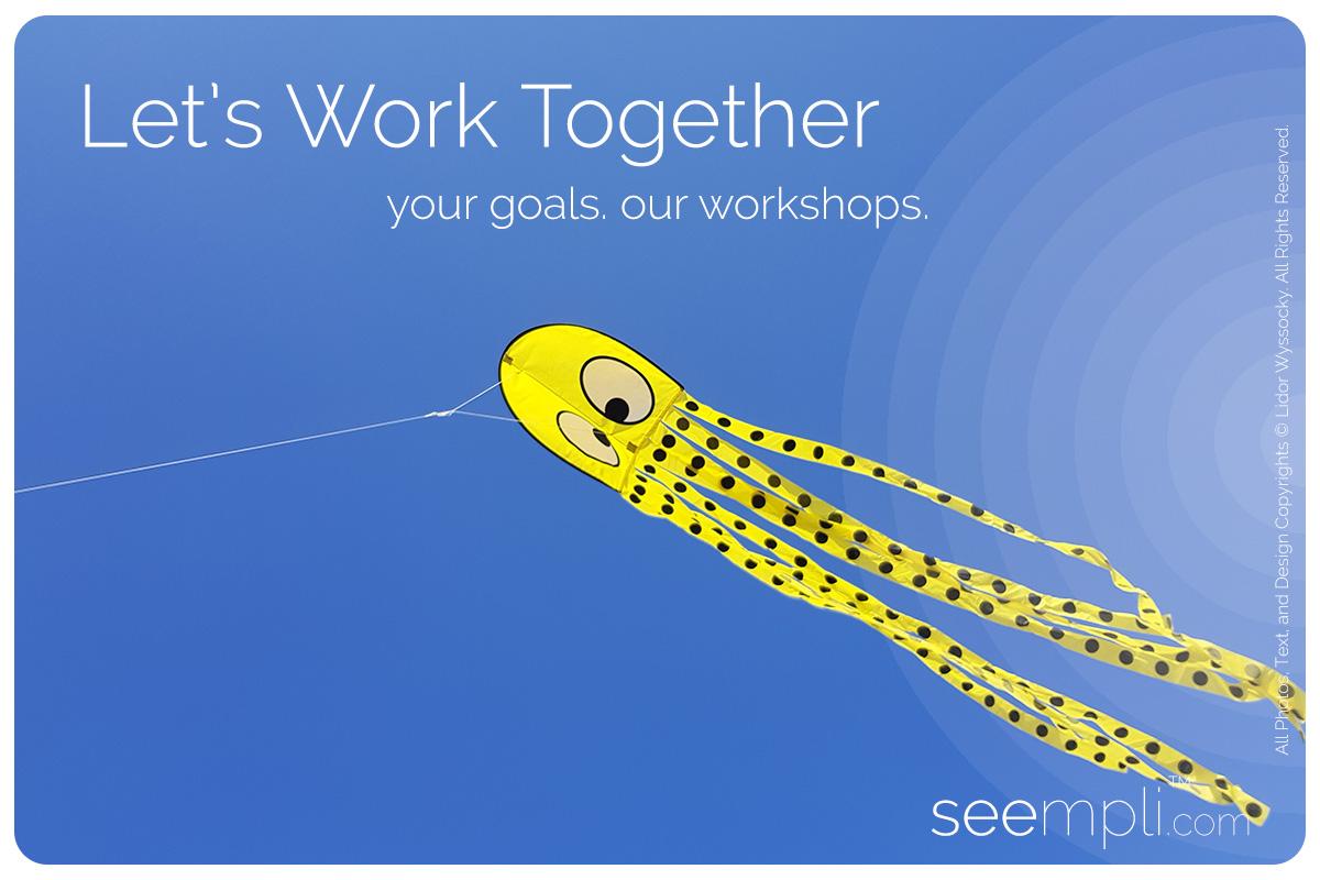 seempli Workshops